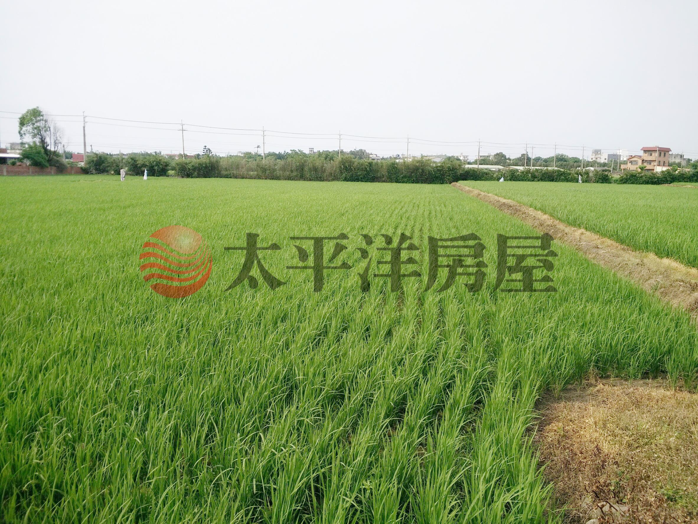 東福路超美農地,桃園市新屋區東勢段