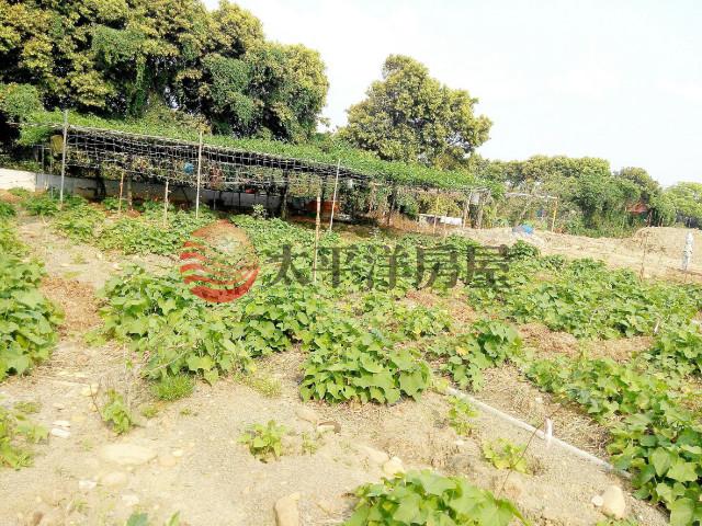 龍潭工業區農地,桃園市龍潭區八張犁段