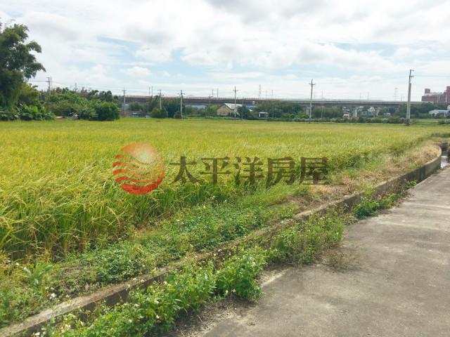 台31線農地,桃園市楊梅區員本段