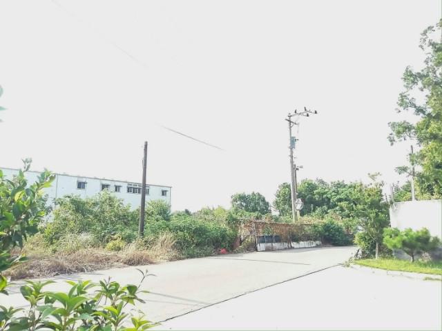 ◆金陵路雙面臨路美農地◆,桃園市平鎮區吉安段