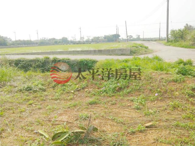 A19捷運旁建地,桃園市中壢區洽溪段