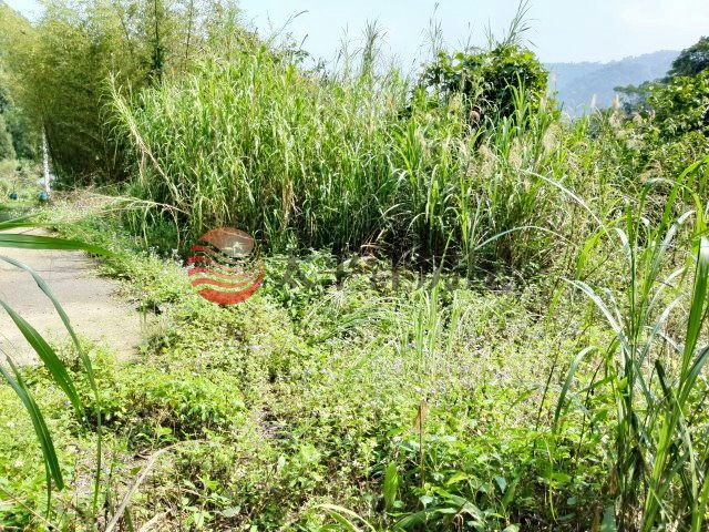 ◆新竹北埔農+建+林◆,新竹縣北埔鄉南坑段