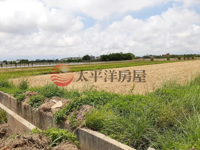 ◆楊梅楊湖路雙面臨路田◆,桃園市楊梅區楊湖段