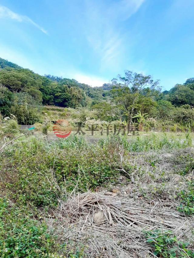 關西便宜農地+林地,新竹縣關西鎮大旱坑段