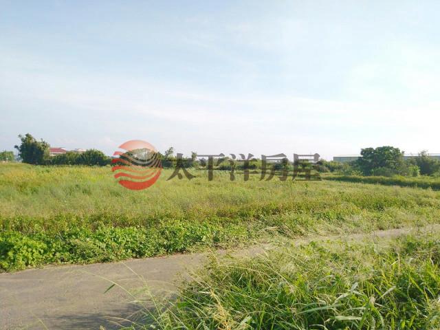 ◆東明國小美農地◆,桃園市新屋區新屋段