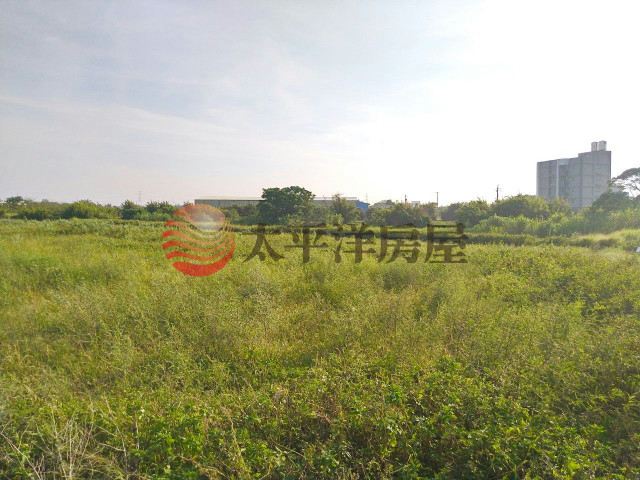 ◆大坡國小農保地◆,桃園市新屋區大坡段