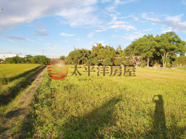 ◆瑞原國小美農地◆,桃園市楊梅區富岡段