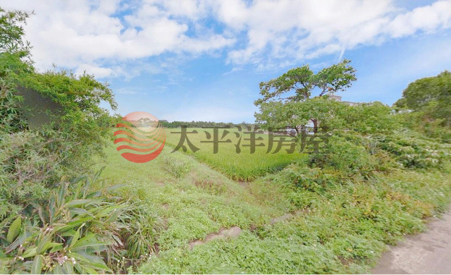 ◆新屋大坡便宜田◆
