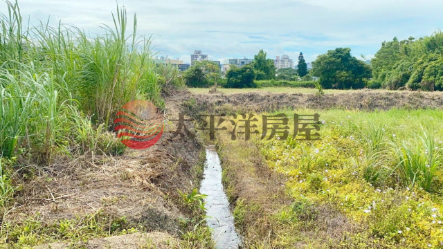 楊梅車站都計內田,桃園市楊梅區水美段