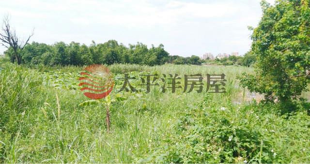 ◆平鎮都內農地◆,桃園市平鎮區賦北段