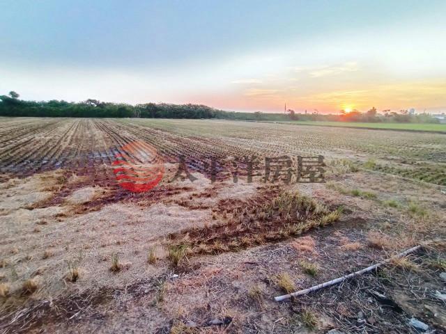 新屋美農地,桃園市新屋區大牛欄段